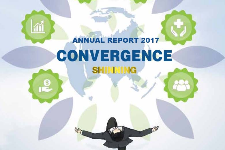 ANNUAL REPORT 2017 – Cover FIG